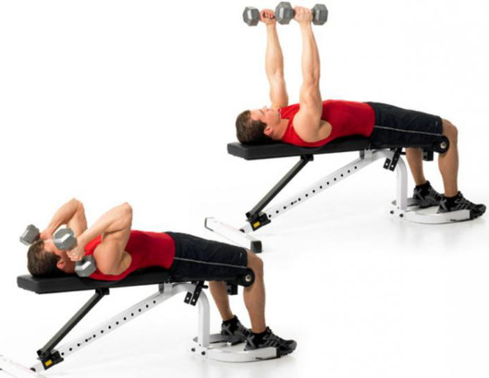Упражнения для похудения в тренажерном зале для