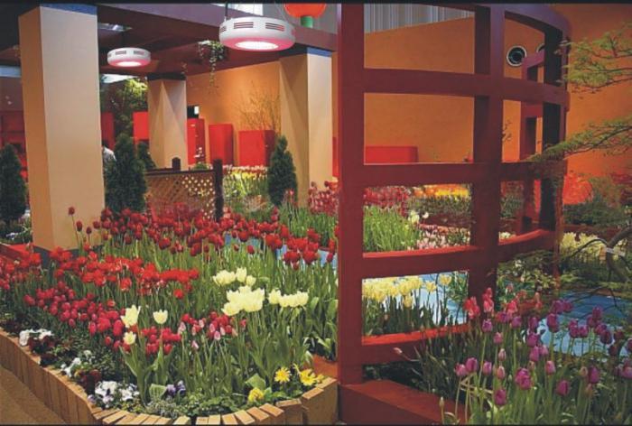 лампы для выращивания рассады