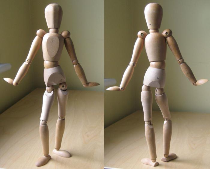 Коленный сустав классификация