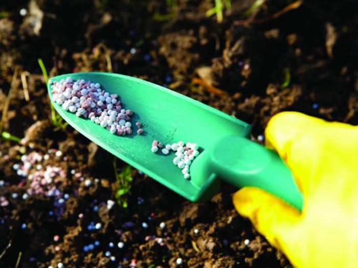 фосфорные удобрения это какие