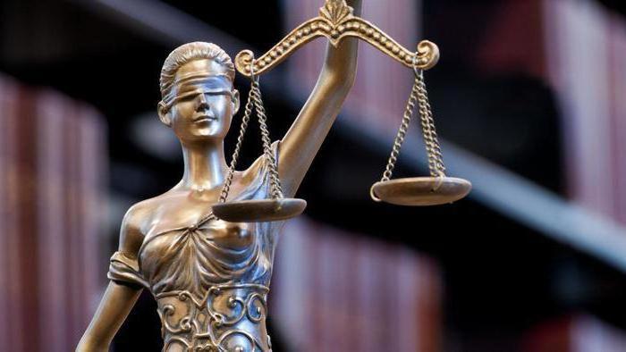 Презумпция невиновности в гражданском праве статья рф