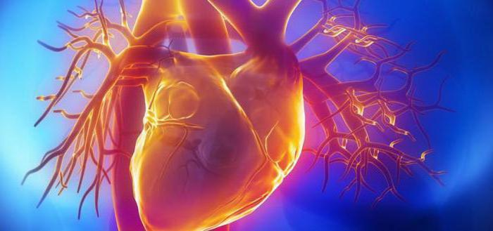 от чего бывает повышен холестерин