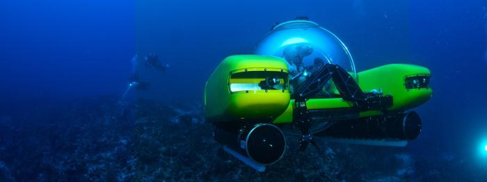 рыбы живущие на дне океана
