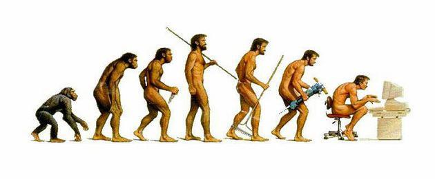 Наука о человеке. Какие науки изучают человека