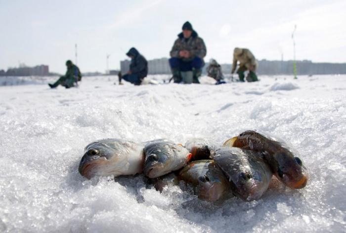 карта озер ленинградской области для рыбалки