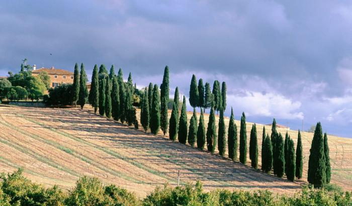 какие изменения в природу италии внесла