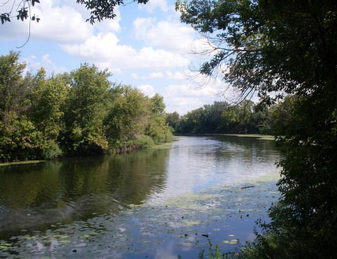 река сестра ленинградская область
