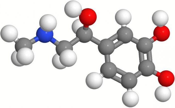 кортизол в крови