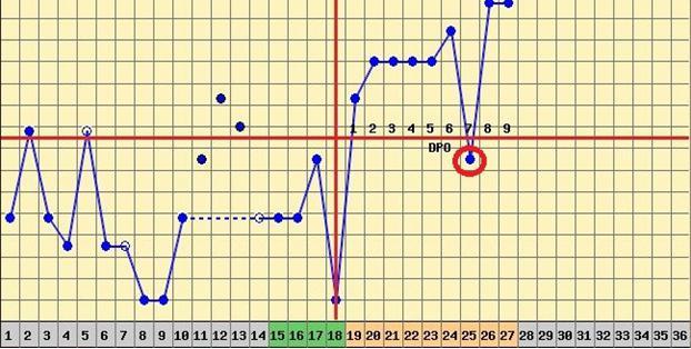 Графики бт при беременности