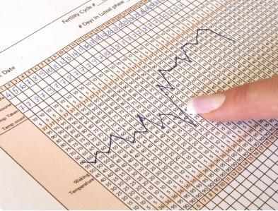 Базальная температура при беременности график