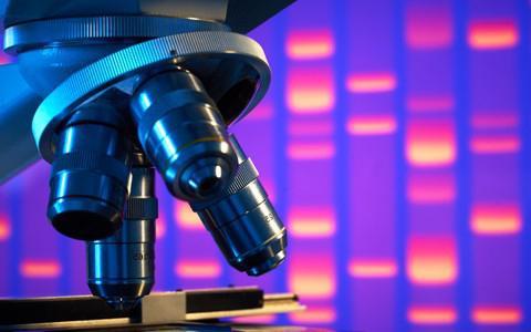 серологические исследования крови расшифровка