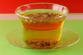 Плоды фенхеля: полезные свойства, противопоказания, особенности применения