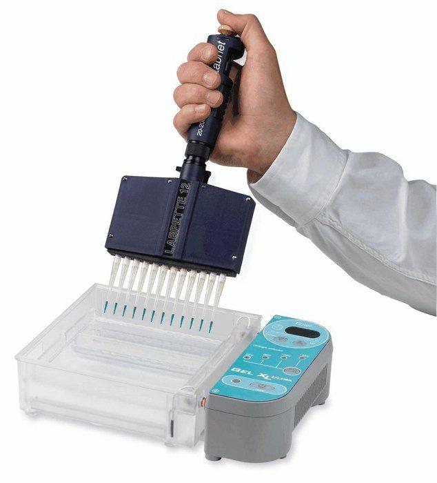 проведение процедуры лекарственного электрофореза