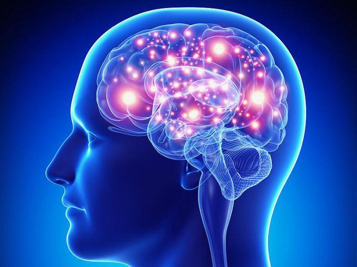 что делать при приступах эпилепсии