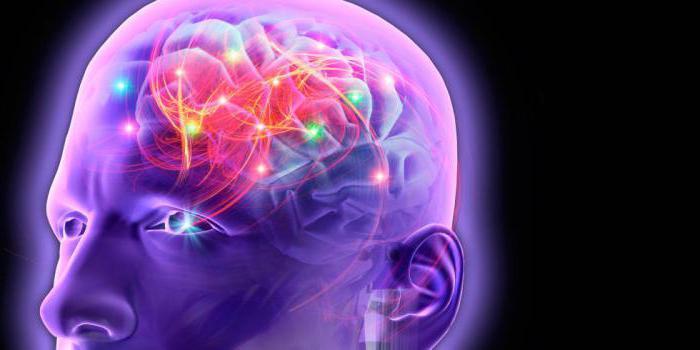 как делают МРТ головного мозга с контрастом