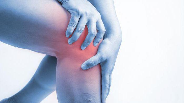 Сыпь при геморрагическом васкулите