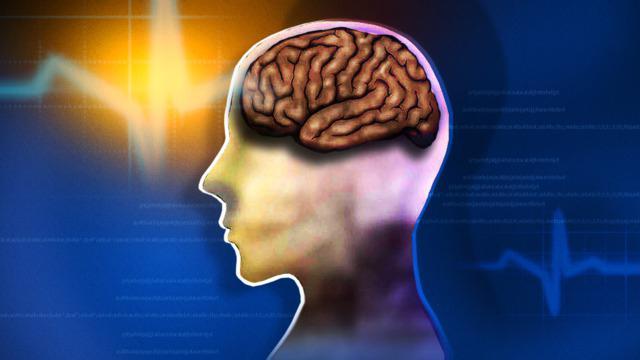 лекарства для улучшения работы мозга да памяти