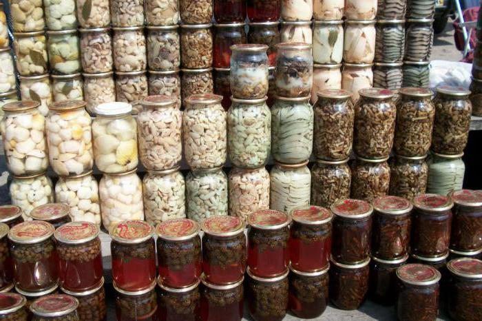 как солить грибы волнушки