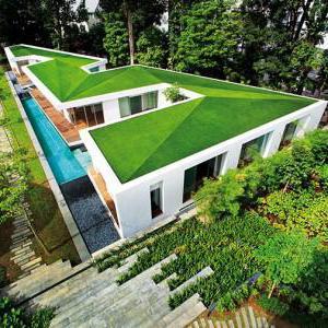 живая крыша