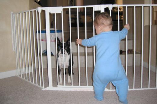 Как сделать ворота безопасности от детей своими руками фото 94