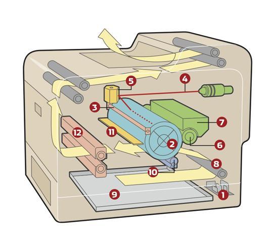 как печатает лазерный принтер