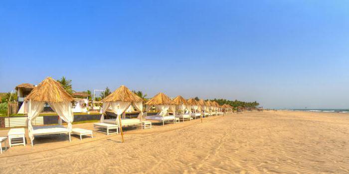 пляж морджим гоа фото