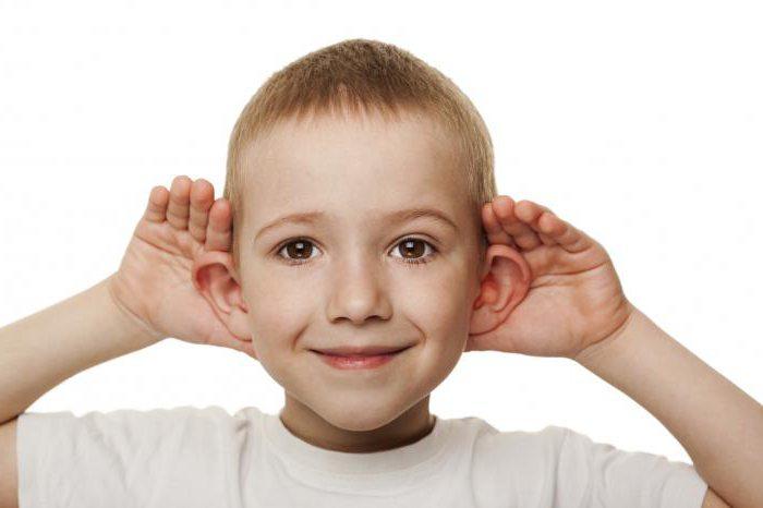 самые большие уши в мире