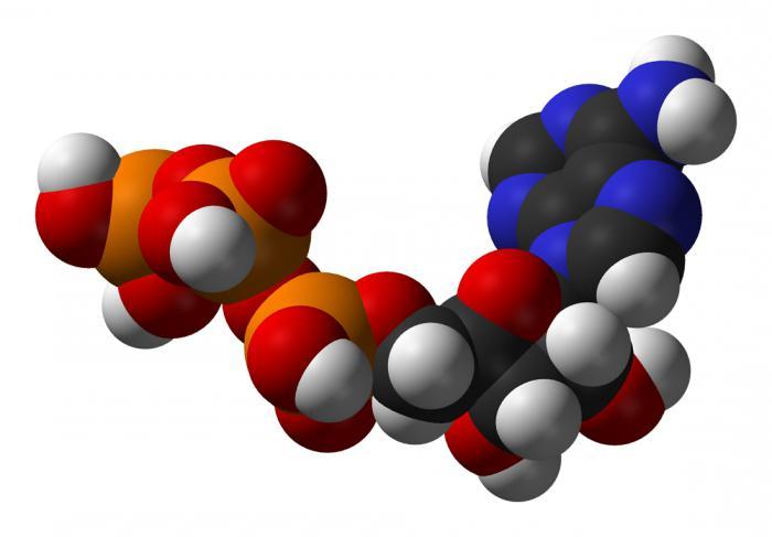 какие таблетки пить против глистов