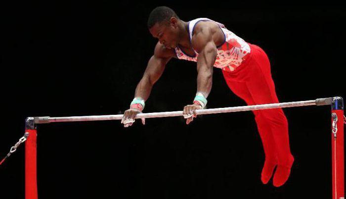 спортивные гимнастические снаряды