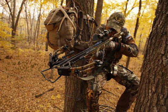 арбалет охотничий фото