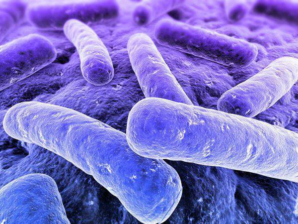 Туберкулез как выявить
