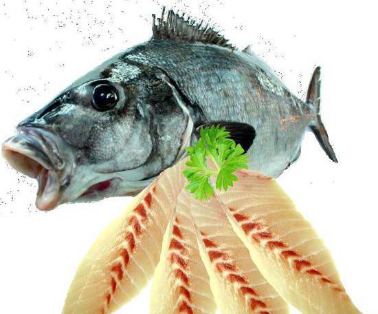 морская промысловая рыба