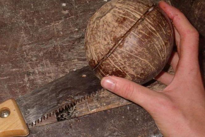 поделки из кокоса