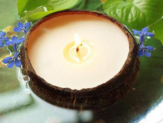 поделки из кокоса своими руками фото для детей