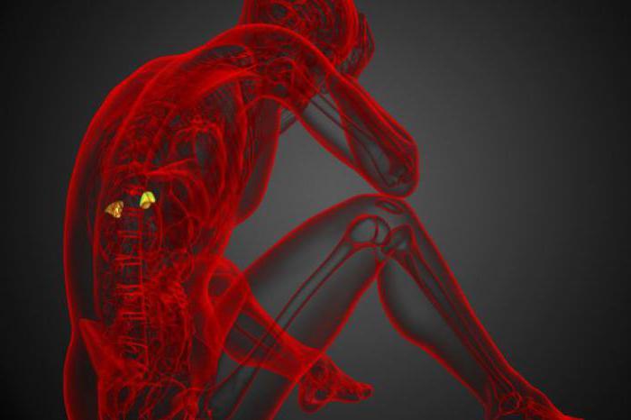надпочечники гормоны гипофункция и гиперфункция