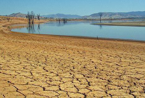 признаки аридного типа климата