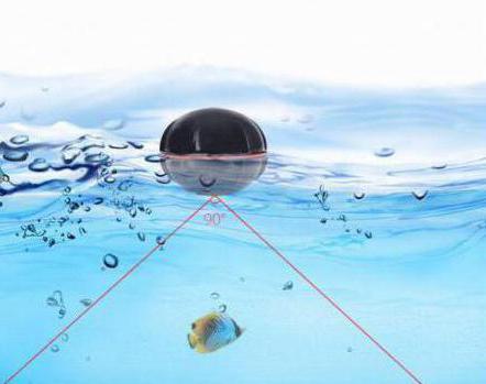 Рыбацкий эхолот покажет труп человека под водой