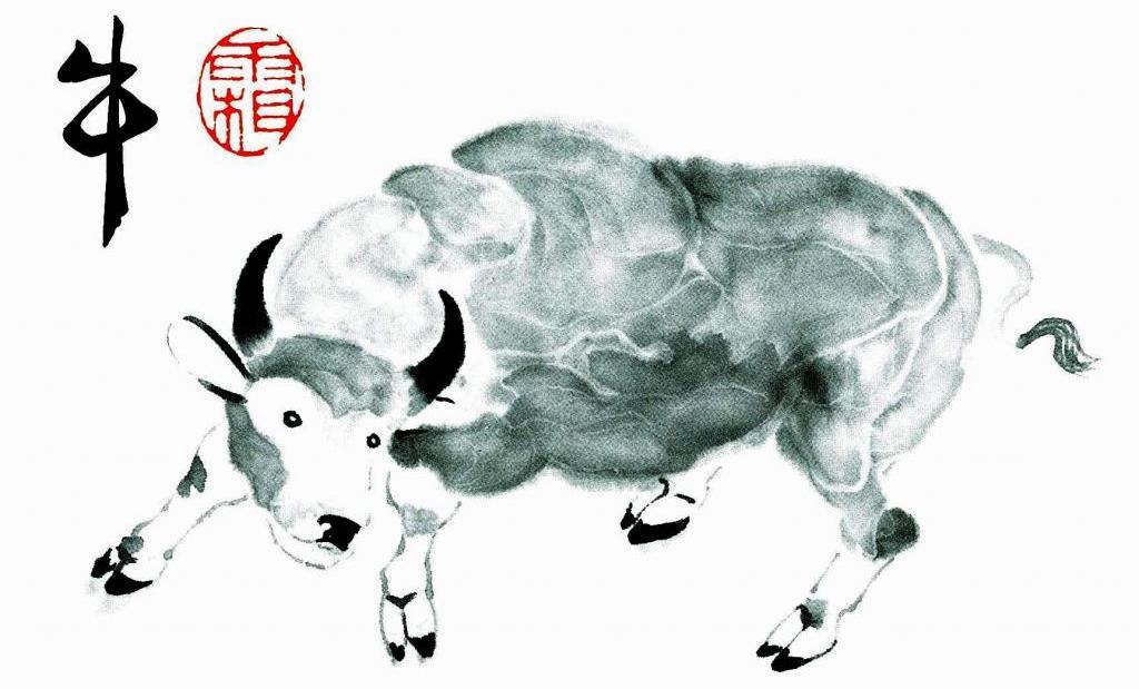 2009 год картинки быка