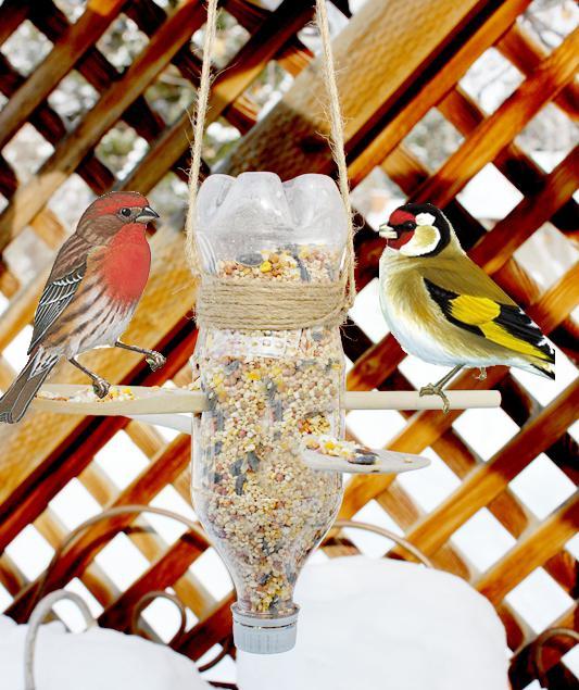 как помогают люди птицам зимой