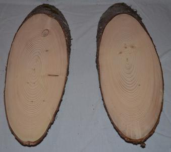 свойства и строение древесины