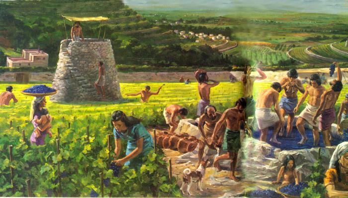 Кто выращивает овощи профессия