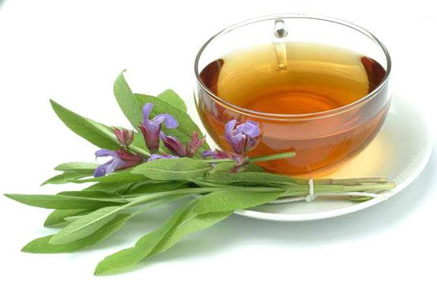 Какой чай для лактации лучший - отзывы и рекомендации