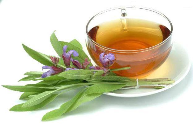 лактационный чай отзывы