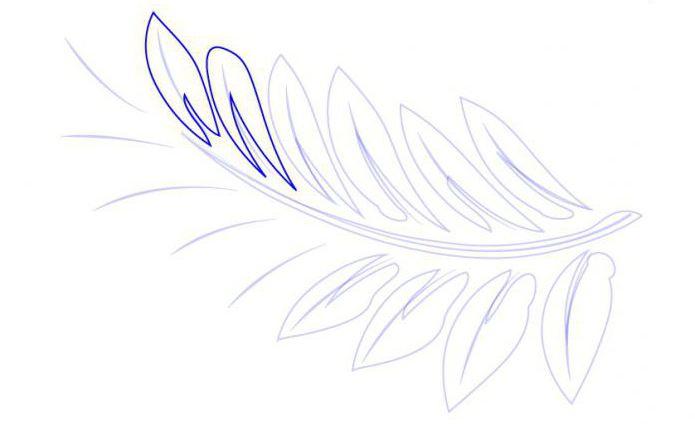 как нарисовать папоротник