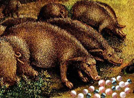 бисер перед свиньями не мечут