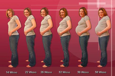 При беременности болит поясница и тянет живот