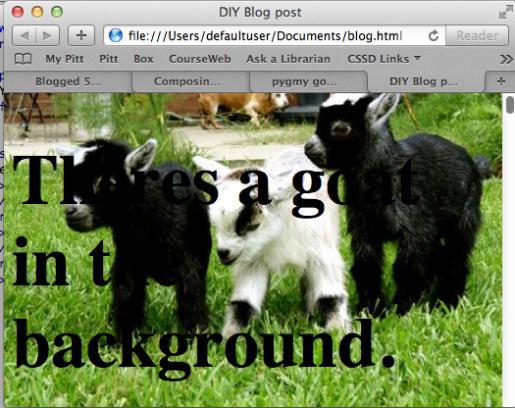 как сделать картинку фоном в html на весь экран