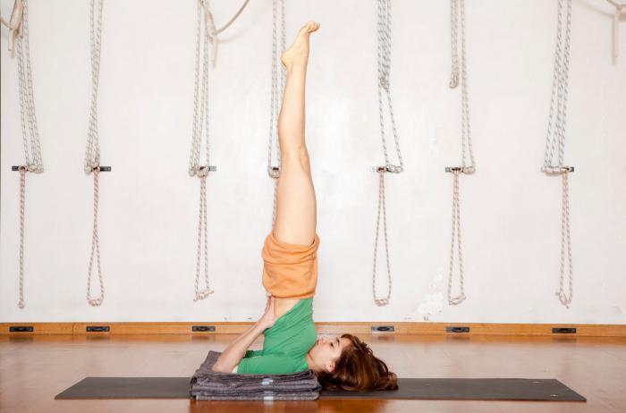 упражнения гимнастика