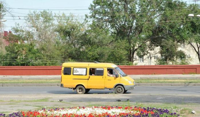 1 детская поликлиника ставрополь адрес