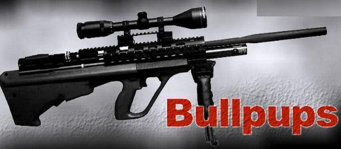 Как сделать пневматическая винтовка домашних условиях